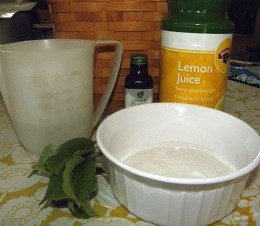 Ingredients to make herbal syrup